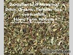 Dandelion Leaf Medicinal, Order now, FREE shipping in San Francisco CA - Free San Francisco SuperAds