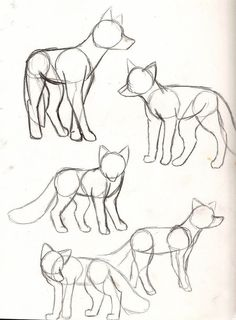 40 Free & Easy Animal Sketch drawing information and .- 40 Free & Easy Animal Sketch Zeichnen von Informationen und Ideen 40 Free & Easy Animal Sketch Drawing information and ideas - Art Drawings Sketches, Cool Drawings, Pencil Art Drawings, Sketch Drawing, Drawing Ideas, Drawing Tips, Dog Drawing Tutorial, Sketching Tips, Anime Sketch
