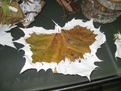 15 Hand Painted Leaves in White assorted sizes by DriftingIdeas, $20.00