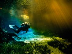 See trip details for diving freshwater caves in Florida, one of 100 best American adventure trips from National Geographic.
