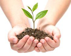 ekologiskt - Sök på Google