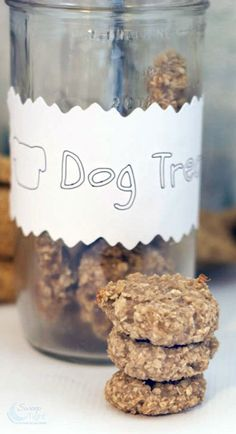 Healthy Dog Treats Oatmeal Banana Homemade Dog Treats Recipe - I have always wanted to make homemade dog treats for our guys. Using simple ingredients, it's easier than you might think to create tasty DIY dog treats Puppy Treats, Diy Dog Treats, Healthy Dog Treats, No Bake Dog Treats, Horse Treats, Dog Biscuit Recipes, Dog Treat Recipes, Dog Food Recipes, Recipe Treats