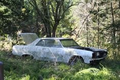 1965 Chevelle SS