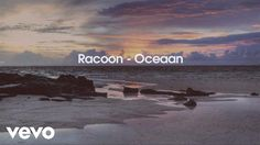 Racoon - Oceaan / Alles is familie Music Mix, My Music, Hello Youtube, Music Clips, Racoon, Dutch Artists, Film Books, Secret Places, Beautiful Songs