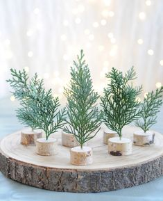 Please visit our website for Mini Christmas Tree, Christmas Mood, Green Christmas, Rustic Christmas, Handmade Christmas, Xmas, Christmas Table Settings, Christmas Tablescapes, Christmas Table Decorations
