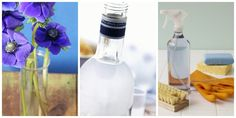 10 Things You Didn't Know You Could Do With Vodka  - CountryLiving.com