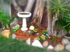 My little garden.