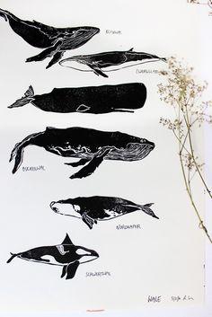 Wanddeko - Walarten Poster, Linoldruck Wale A3 Print - ein Designerstück von halfbird bei DaWanda