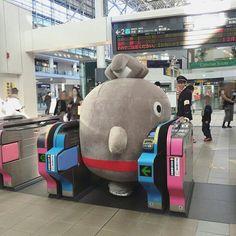 Absolute unit of a train customer Kawaii Shop, Kawaii Cute, Videos Anime, Plushies, Softies, Funny Photos, Animals And Pets, Hilarious, Japan Funny