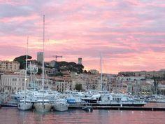 Port de Cannes in Cannes, PACA