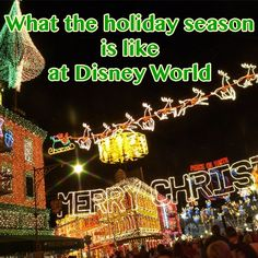 What the holiday season is like @ Disney World