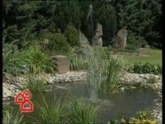 Kerti tó építése Plants, Plant, Planting, Planets