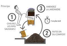 Paris va installer des urinoirs publics écologiques qui font pousser des fleurs !