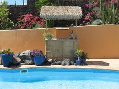Canary Islands, Villa with beautiful pool and loving pussycats #HouseSitter Needed Lanzarote, , Tias Spain Sep 25,2014 For 3 weeks Cat loving House sitter wanted in large beautiful villa with pool and gardens in Lanzarote in the Canary Islands. The Villa is situated in Tias just 10 minutes drive from the beach and 5 minutes from a wonderful golf course. Tias is a charming village with many restaurants bar and amenities