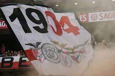 'Glorioso TOPO SUL Forever!': isto sim é à Glorioso Sport Lisboa e Benfica...