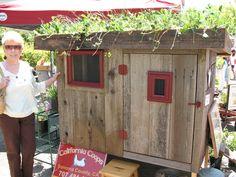 Living roof chicken coop...