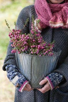 scarf. sweater. wrist warmers. purple.  just lovely.