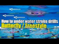이현진 수영 / how to butterfly stroke / 접영팔돌리기 /접영 연결동작/접영호흡/접영기초 - YouTube