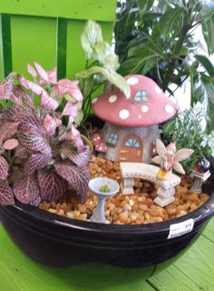 1000 images about miniature gardening and fairy gardens on pinterest may garden fairies for Earl may nursery garden center