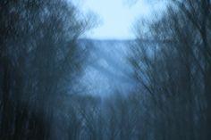 Terror Trail - A Poem By Satish_Verma