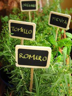 Un mini jardín de aromáticas en tu  minicocina