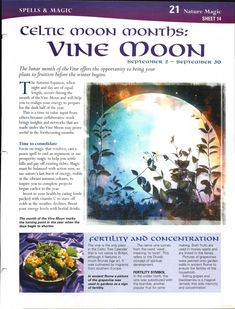 Enhancing Mind Body Spirit  21 Nature Magic Card 14 Celtic Moon Months: Vine Moon
