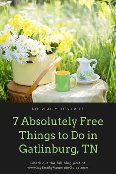 7 free things to do in Gatlinburg, Tennessee. Here is our list of 7 absolutely free things to do in Gatlinburg. It's free! Mountain Vacations, Family Vacation Destinations, Tennessee Waterfalls, Attraction Tickets, Gatlinburg Tennessee, Free Things To Do, Find Hotels, Great Smoky Mountains, Places