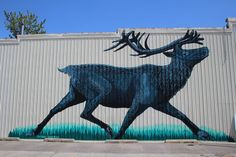 Endangered Species Mural Project launched around the United States - The Center For Biological diversity. Geek Out, Endangered Species, Animal Rights, Local Artists, Lovers Art, Street Art, Moose Art, Wildlife, Product Launch