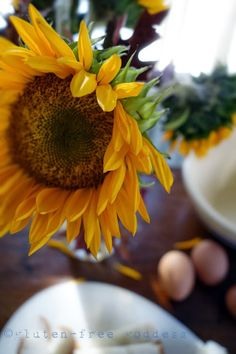 Cooking & Baking Gluten-Free: Tips from Karina - Gluten-Free Recipes   Gluten-Free Goddess