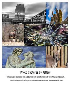 A collage of Photo Captures by Jeffery photo prints.