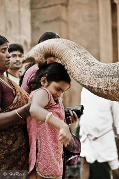 Elephant Blessing in India