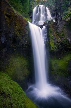 Falls Creek Falls, OR