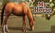 My Horse is a fun interactive free game for the tablet.   In this game you have tasks to complete in order to gain money and gems. You can also groom your