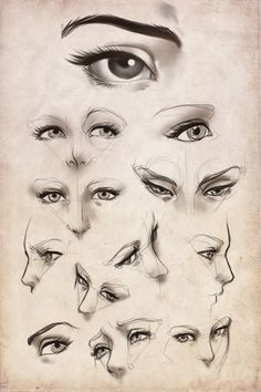 eyes reference - Buscar con Google