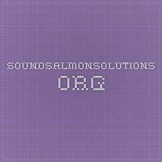 soundsalmonsolutions.org