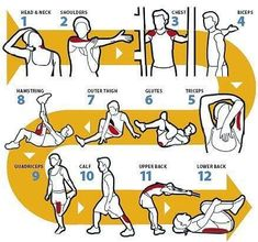 easy stretches to do before and after a work out.