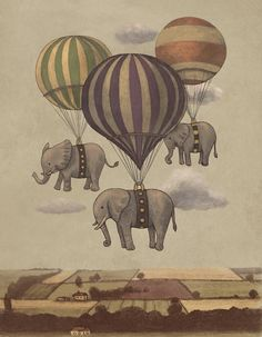 flying elephant. Ilustraciones de Terry Fan