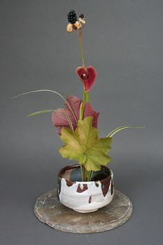 Ikebana-Vertical Composition by sogetsudc, via Flickr