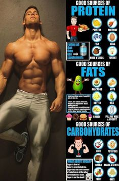 6 Of The Best And Most Beneficial Foods And Drinks To Eat Post Workout &; GymGuider 6 Of The Best And Most Beneficial Foods And Drinks To Eat Post Workout &; GymGuider Abnehmen Gewichtsverlust We […] training food Gym Workout Tips, Weight Training Workouts, Fitness Workouts, Post Workout, Fitness Tips, Push Pull Workout Routine, Fitness Tracker, Workout Drinks, Weight Exercises