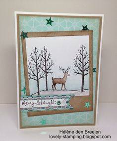 White Christmas - From the SU! Holiday catalogue till Jan 5, 2015 #136911 $19.95 CAD www.stampinjo.stampinup.net