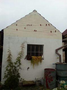 Ptáci na drátech Cabin, House Styles, Home Decor, Homemade Home Decor, Cabins, Cottage, Decoration Home, Cubicle, Interior Decorating