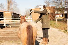 Natural Horsemanship, Horse Training, Statue, Horses, Animals, Cookie, Baby Steps, Pony Horse, Cuddle