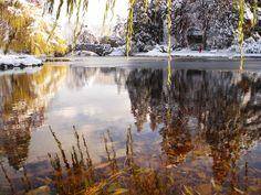 Victoria BC, Canada - Beacon Hill Park