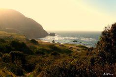 Catalina Island, CA Adventure | Lost & Found