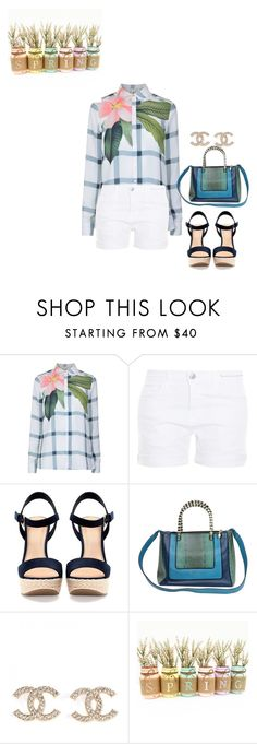 """""""Casual"""" by slayedbyk on Polyvore featuring Ted Baker, Current/Elliott, Pull&Bear and Bulgari"""