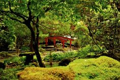 Butchart Gardens: part of the Japanese garden.  #butchartgardens #japanesegarden