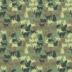 Cat Camuflagem