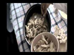 Alberta Social Studies: Meteghan traditions (food). Rappie Pie: Yarmouth and Acadian Shores, Nova Scotia