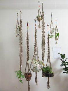 macrame plant holders #macrame #hand_made #plants