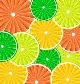 Citrus background texture with slices of lemon, grapefruit, lime and orange. Vector stylized background. stock photography